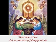Corpus Christi Novena Day 8 I thank You, most loving Jesus, for having made Yourself my food, and for uniting me to Yourself . Catholic Hymns, Catholic Prayers, Catholic Saints, Roman Catholic, Catholic Beliefs, Corpus Christi, Image Jesus, Photo Images, Bing Images