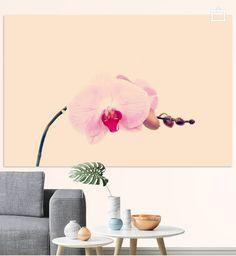 Neu in meiner Galerie bei OhMyPrints: GENTLE ORCHID I #kunst #fotografie #orchidee #art #rosa #pink #blumen #photography #blossom #gentle #piaschneider #ohmyprints