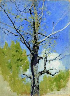 Issac Levitan, Trunk of Burgeoning Oak
