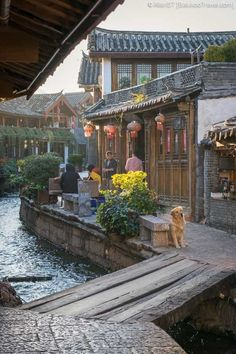 Lijiang Old Town (丽江古城) is amongst China's best-preserved ancient town and a UNESCO World Heritage site. Read about it in our Lijiang Old Town Travel Guide! Ancient Chinese Architecture, Asian Architecture, Blue Sky Hotel, Places To Travel, Places To Visit, China Travel Guide, Lijiang, Travel Aesthetic, World Heritage Sites