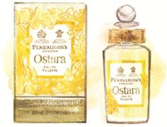 This spring sees the launch of Ostara from Penhaligon's. This daffodil inspired fragrance, created by Master Perfumer Bertrand Duchaufour, is a modern interpretation of this delicate and incandescent flower providing an. Solar, Fun Illustration, Beauty News, New Fragrances, Daffodils, Perfume Bottles, Delicate, Product Launch, Spring