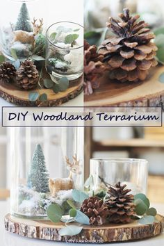 An easy DIY holiday inspired woodland terrarium - perfect for your holiday decor All Things Christmas, Simple Christmas, Diy Christmas, Christmas Decorations, Table Decorations, Diy Home Decor Easy, Cheap Home Decor, Diy Simple, Easy Diy