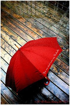 """The red umbrella says, """"You can stand under my umbrella"""" Ironic? Umbrella Art, Under My Umbrella, Purple Umbrella, Walking In The Rain, Singing In The Rain, Fotografia Pb, I See Red, Umbrellas Parasols, Simply Red"""