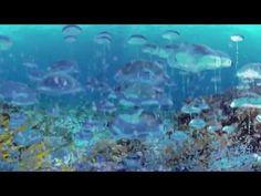 (5) 360° on deep-sea fishing ban - YouTube
