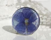 Real blue flower ring- real flax flower  - pressed flower ring - handmade ring- ECO Style Jewelry -r0009