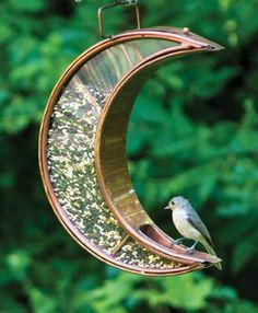 A Birdfeeder for Your Backyard