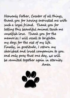 Pet Quotes Dog, Pet Loss Quotes, Dog Quotes Love, Animal Quotes, I Love Dogs, Puppy Love, Dog Heaven Quotes, Pet Loss Grief, Dog Poems