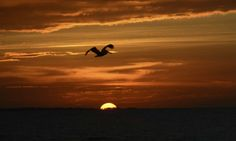 Sunset. Holbox Island. Fotos en Cuartoscuro: entre luces y graffiti - Aristegui Noticias
