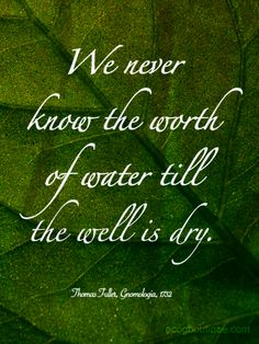"""""""We never know the worth of water till the well is dry."""" ~Thomas Fuller, Gnomologia, 1732"""