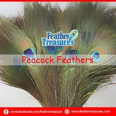"Nando Ostrich Feathers Emerald Green 18""+ – 10pcs"