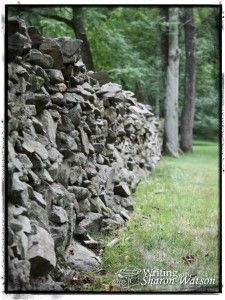 """In 1961, famous poet Robert Frost did something no other poet had ever done. Read about it here and comment on his poem """"Mending Wall."""""""