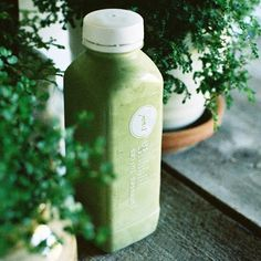 """It's the M Y L K that's on everyone's lips at the moment // """"Looking for a filling and fun addition to your lunch, try our Green Mylk! High in protein, monounsaturated fats, B vitamins, magnesium and iron, the ingredients in Green Mylk make for an amazing all natural energy supporting cocktail to help your mid-afternoon feel like mid-morning""""- Natasha, Hawthorn Nutritionist • Pressed Juices - Positively Life Changing (Photo via @summersclaireey)"""