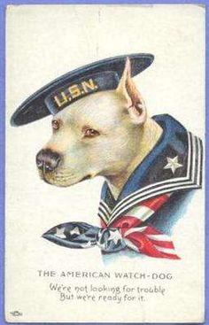 vTg WWI American Watch Dog US Navy uniformed Bull Terrier pit patriotic postcard Pin Ups Vintage, Vintage Dog, Go Navy, Navy Mom, Navy Life, Vintage Printable, Gato Animal, Les Fables, Nanny Dog