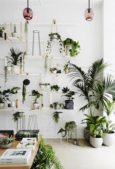 Greenery is elevated to an art form, at IVY MUSE's galleryesque Melbourne homage to all things botanical...
