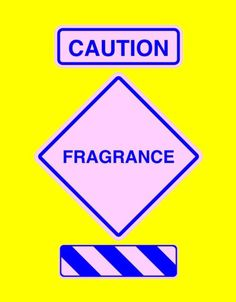 Air fresheners and scented cleaning products are among the seven common household items that the Environmental Working Group says may feminize boys: http://www.ewg.org/enviroblog/2007/10/caution-these-seven-household-items-may-feminize-baby-boys Go fragrance free!