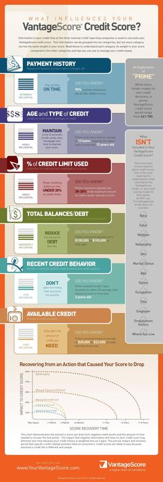 Credit Score infographics