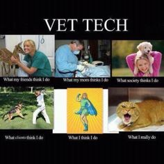 Hex Yeah... Registered Veterinary Technician... Love My Life!!!