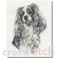 CrossstitchUK King Charles Cavalier