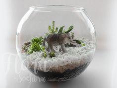 florarium | terrarium | design | garden | слон | флорариум