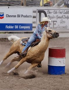 The best Rodeo outfits - meowlogy Barrel Race, Barrel Racing Saddles, Barrel Racing Horses, Barrel Horse, Rodeo Outfits, Cowgirl Outfit, Palomino, Cowgirls, Rodeo Life