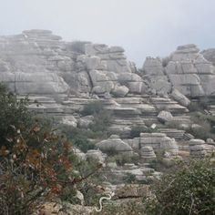 The beautifully surreal El Torcal.  http://marbellaescapes.com/tours/el-torcal-wolf-park-and-dolmens-of-antequera/  #torcaldeantequera #antequera #andalucia #spain #travel #tours #karst #landscape