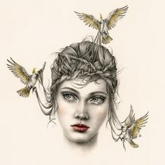 Image result for fairy tales for wilde girls