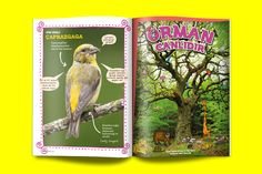 Dünyalı Dergi 12 on Behance. A magazine for kids. Editorial design by Burak Tuna.