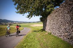 Das #Granithügelland beim #Radfahren entdecken. Weitere Informationen zu #Radurlaub im #Mühlviertel in #Österreich unter www.muehlviertel.at/radfahren - ©Oberösterreich Tourismus/Erber Austria, Sidewalk, Beautiful Kids, Bike Rides, Tourism, Bicycle, Side Walkway, Walkway, Walkways