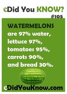 Watermelons are 97% water, lettuce 97%, tomatoes 95%, carrots 90%, and bread 30%. http://edidyouknow.com/did-you-know-105/