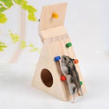 Image Result For Homemade Hamster Chew Toys Hamster Toys