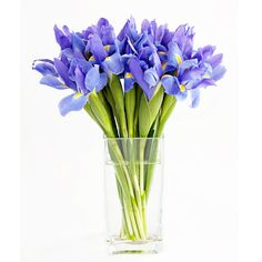 Flowers by season... Irises, Cala lillies and magnolias are all in season for October... Decisions , decisions