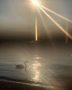 """Nicole Russo on Instagram: """"Quando il nostro lago torna a risplendere. Senza turismo e con acque cristalline."""" Russia, Celestial, Abstract, Artwork, Outdoor, Instagram, Turismo, Summary, Outdoors"""