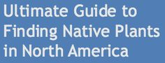 Ultimate Guide to Finding Reilable Native Plant nurseries of the U.S. and Canada