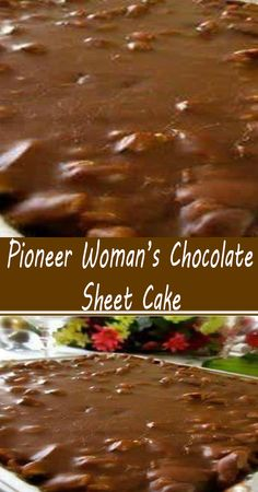 Delicious Cake Recipes, Yummy Cakes, Sweet Recipes, Cake Receipe, Sheet Cake Recipes, Chocolate Sheet Cakes, Chocolate Desserts, Pioneer Woman Recipes, Pioneer Women