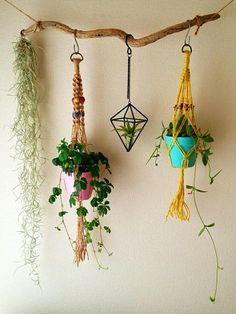 家の中の空間を利用して、観葉植物や多肉植物を飾ることのできる「プラントハンガー(ハンギングプランター)」が、今ひそかなブームです。一見作るのは難しそうですが、紐さえあれば実は簡単に作れるお洒落なアイテム。その作り方と飾り方を、動画なども交えてご紹介します。ぜひ、この週末はハンドメイドにトライして、空間を素敵に飾ってみましょう♪