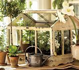 Love my little green house from Pottery Barn / getting a stand made (with legs and a shelf underneath) to raise it up / can't wait to put plants in it.