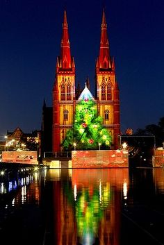 St Mary's Cathedral #Sydney #Australia showing the Christmas lights projected on the facade.