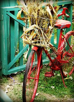Bike decorated for Fall (from Windy Meadows Farm) Bicycle Basket, Old Bicycle, Old Bikes, Bike Baskets, Bicycle Decor, Bicycle Art, Country Living Fair, Country Life, Country Fall