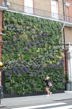 J-crew | London | They are under renovation and they make a living wall!!!! It's gorgeous and I love it!   Hmvm.co.uk