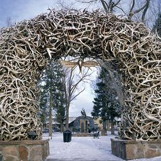 This is an antler arch in Jackson Hole, WY, created from antlers shed by animals or from those who died natural deaths.  They are collected annually by the Boy Scouts.