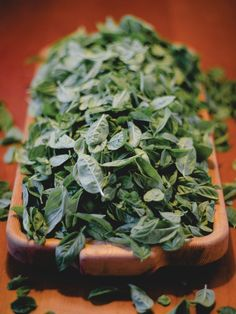 HGTV Gardens: 14 Fun Recipes and Uses for Garden Herbs, ie: Pesto Recipe