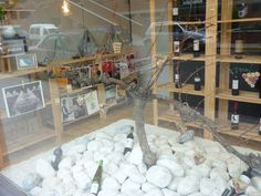 La cepa de Electricidad Gistau gana el Concurso de Escaparates Vino Somontano | Gente con ganas de vivir