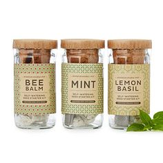 Look what I found at UncommonGoods: Self-Watering Herbal Tea Kit for $30.00