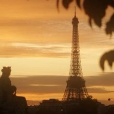 Beautiful Paris in November sunset. wow