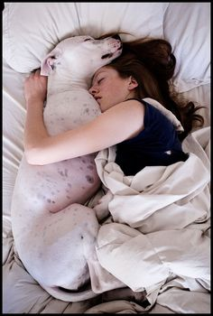 Awww :) Pitbull = body pillow :)
