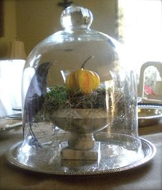 cling film printed decals for cloches