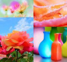 Blue+Orange+%26+Pink+%5BFriday+Flickr+Photo+Collage%5D