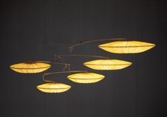 Lighting   Aqua Creations   Lighting and Furniture Atelier