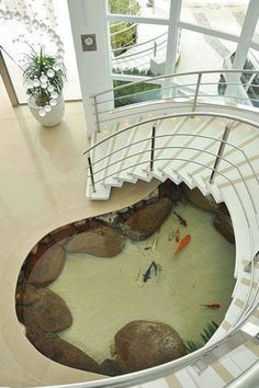 Pond under the stairs!