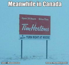 Meanwhile in Canada ( Canadian Memes, Canadian Things, I Am Canadian, Canadian Humour, Canada Jokes, Canada Funny, Canada Eh, Meanwhile In Canada, Tim Hortons